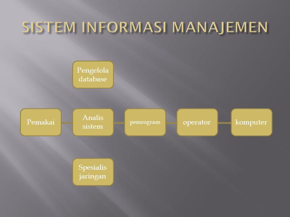 Pemakai Pengelola database komputeroperator pemrogram Analis sistem Spesialis jaringan