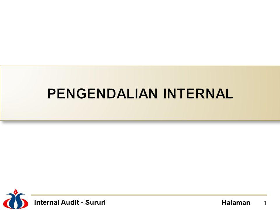 Internal Audit - Sururi Halaman Entitywide and process-level control activities.