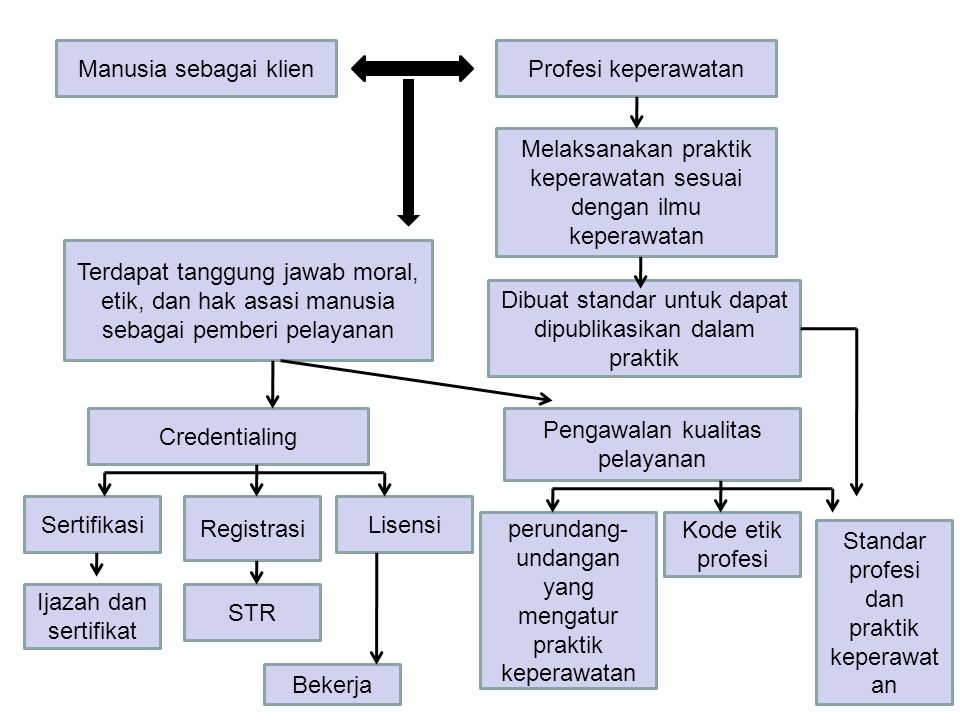 8 CIRI PROFESI Self Governing Self Regulating Self Disciplining Dahrendorf R, J.