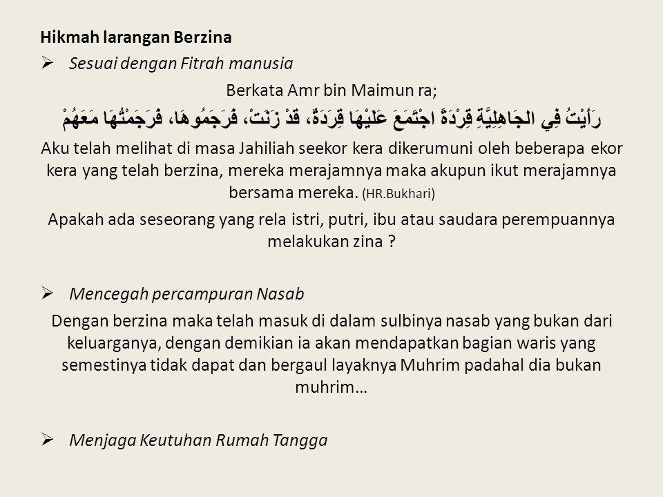 Hikmah larangan Berzina  Sesuai dengan Fitrah manusia Berkata Amr bin Maimun ra; رَأَيْتُ فِي الجَاهِلِيَّةِ قِرْدَةً اجْتَمَعَ عَلَيْهَا قِرَدَةٌ، ق