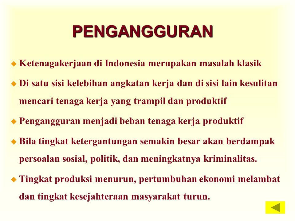 PENGANGGURAN u Ketenagakerjaan di Indonesia merupakan masalah klasik u Di satu sisi kelebihan angkatan kerja dan di sisi lain kesulitan mencari tenaga