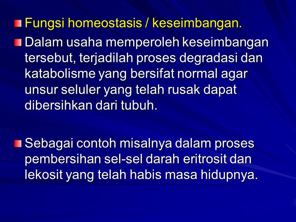 Fungsi homeostasis / keseimbangan. Dalam usaha memperoleh keseimbangan tersebut, terjadilah proses degradasi dan katabolisme yang bersifat normal agar
