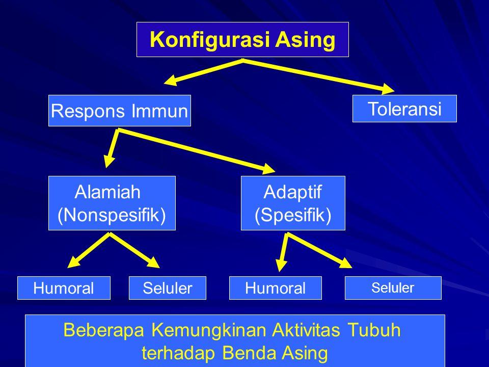 Konfigurasi Asing Toleransi Respons Immun Seluler Humoral Adaptif (Spesifik) Alamiah (Nonspesifik) Seluler Humoral Beberapa Kemungkinan Aktivitas Tubuh terhadap Benda Asing
