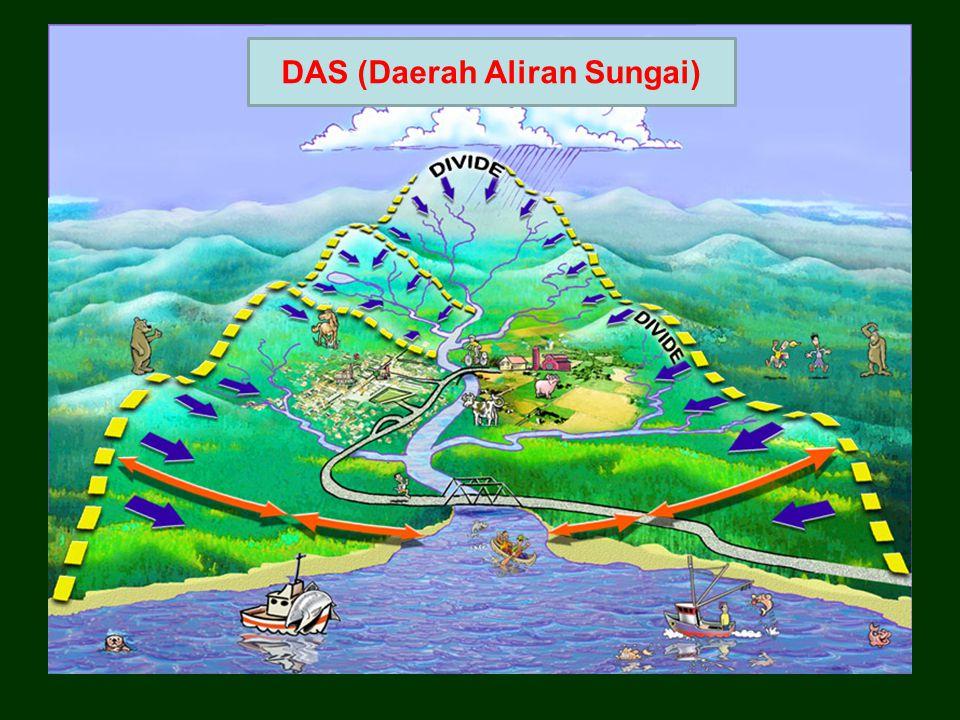 DAS (Daerah Aliran Sungai)