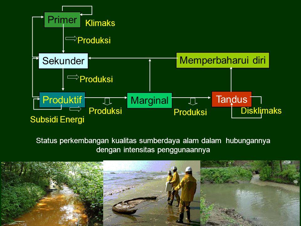 Primer Produksi Sekunder Produktif Marginal Tandus Memperbaharui diri Subsidi Energi Klimaks Disklimaks Produksi Status perkembangan kualitas sumberda