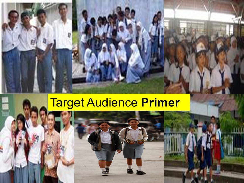 Target Audience Primer