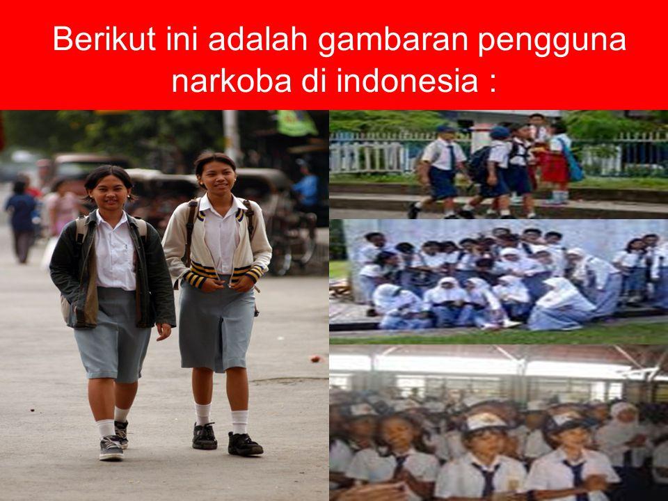 Berikut ini adalah gambaran pengguna narkoba di indonesia :