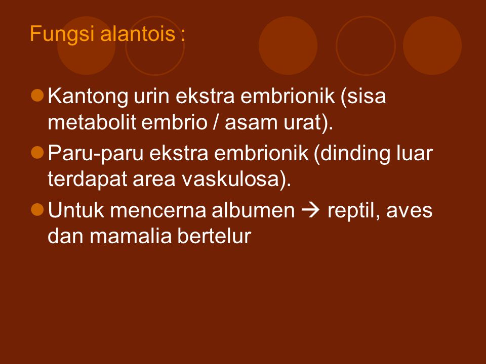 Fungsi alantois : Kantong urin ekstra embrionik (sisa metabolit embrio / asam urat). Paru-paru ekstra embrionik (dinding luar terdapat area vaskulosa)