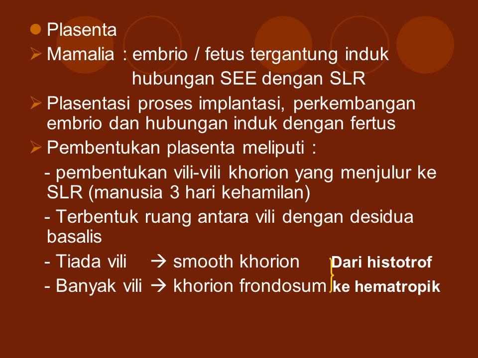 Plasenta  Mamalia : embrio / fetus tergantung induk hubungan SEE dengan SLR  Plasentasi proses implantasi, perkembangan embrio dan hubungan induk de