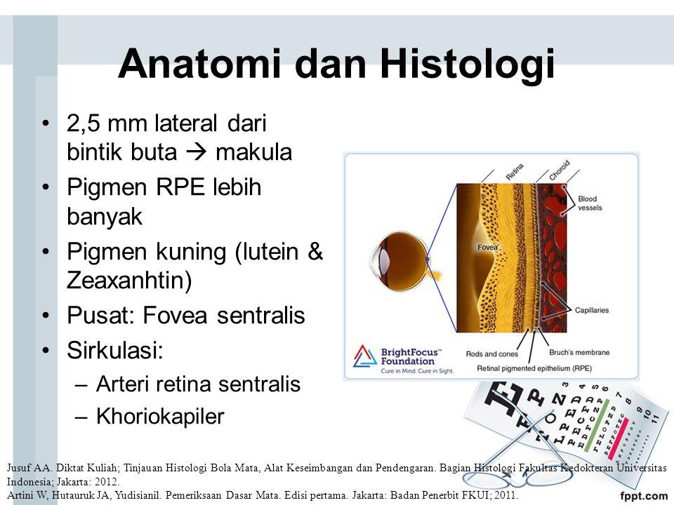 Anatomi dan Histologi 2,5 mm lateral dari bintik buta  makula Pigmen RPE lebih banyak Pigmen kuning (lutein & Zeaxanhtin) Pusat: Fovea sentralis Sirkulasi: –Arteri retina sentralis –Khoriokapiler Jusuf AA.