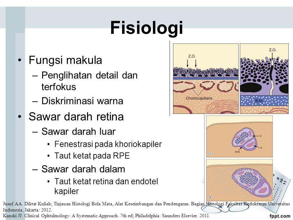 Fisiologi Fungsi makula –Penglihatan detail dan terfokus –Diskriminasi warna Sawar darah retina –Sawar darah luar Fenestrasi pada khoriokapiler Taut ketat pada RPE –Sawar darah dalam Taut ketat retina dan endotel kapiler Jusuf AA.