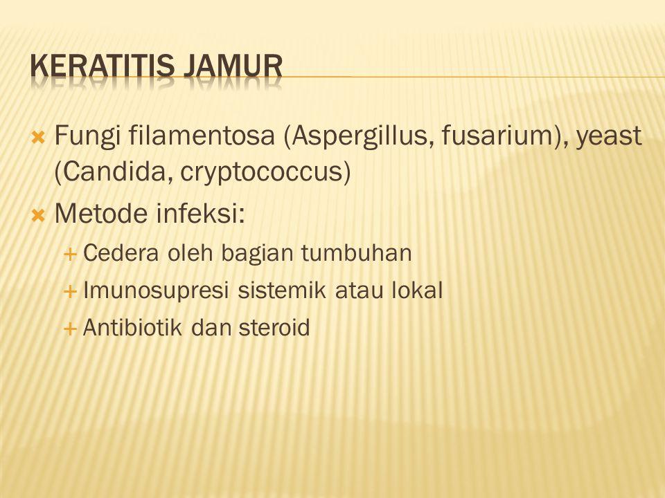  Fungi filamentosa (Aspergillus, fusarium), yeast (Candida, cryptococcus)  Metode infeksi:  Cedera oleh bagian tumbuhan  Imunosupresi sistemik ata