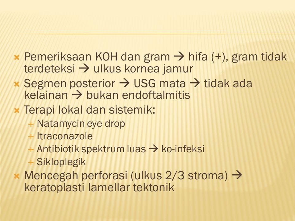  Pemeriksaan KOH dan gram  hifa (+), gram tidak terdeteksi  ulkus kornea jamur  Segmen posterior  USG mata  tidak ada kelainan  bukan endoftalm