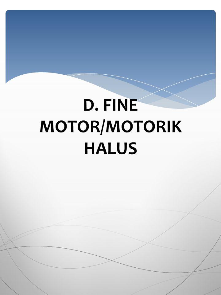 D. FINE MOTOR/MOTORIK HALUS
