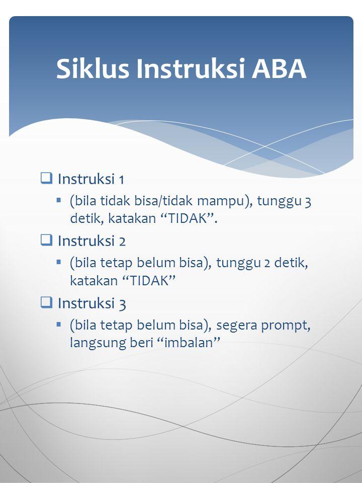  A /achieve diberikan jika anak dapat melakukan instruksi dengan benar  P /prompt diberikan jika anak masih memerlukan bantuan dalam melakukan instruksi  Imbalan positif diberikan jika anak mampu melakukan instruksi dengan benar  Mastered, jika anak sudah mampu menguasai 9 x A pada aktifitas tertentu secara berturut-turut Penilaian ABA