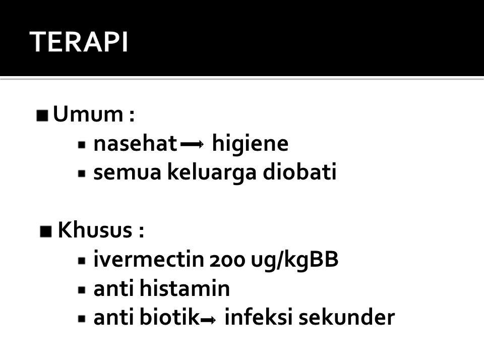 Umum : nasehat higiene semua keluarga diobati Khusus : ivermectin 200 ug/kgBB anti histamin anti biotik infeksi sekunder