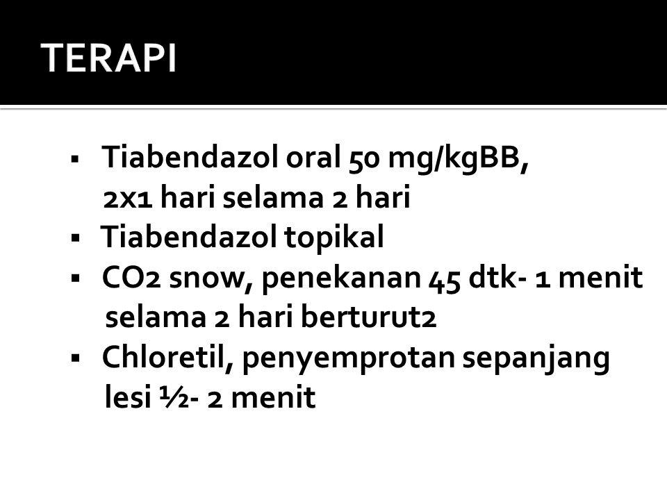  Tiabendazol oral 50 mg/kgBB, 2x1 hari selama 2 hari  Tiabendazol topikal  CO2 snow, penekanan 45 dtk- 1 menit selama 2 hari berturut2  Chloretil,