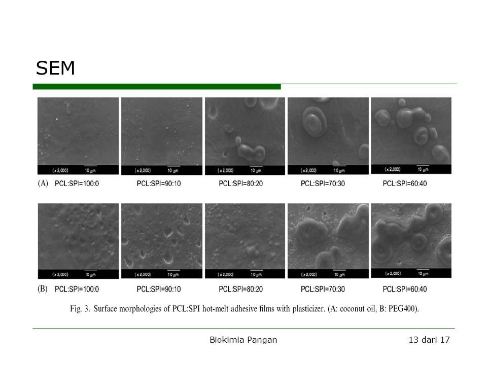 Biokimia Pangan13 dari 17 SEM
