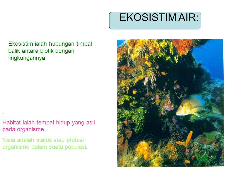 Indikator: 1.Membedakan penggunaan istilah-istilah habitat,nisia, populasi, komunitas,ekosistim, faktor biotik dan abiotik 2. Menjelaskan proses sukse