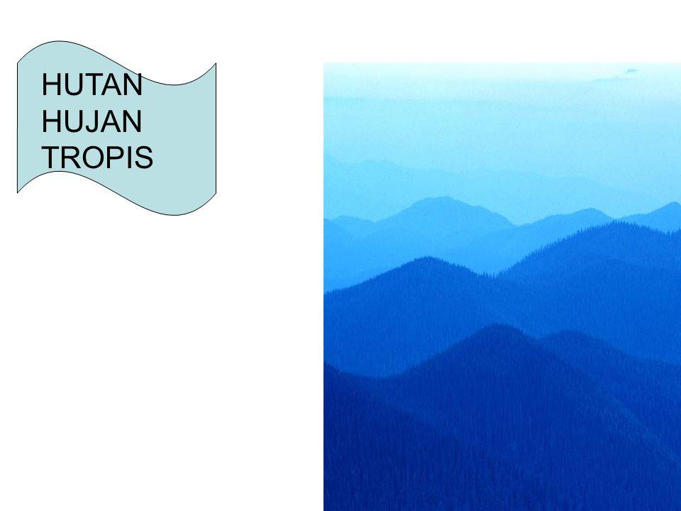 EKOSISTIM HUTAN TROPIS Komunitas adalah beberapa populasi yang berada pada suatu daerah tertentu.
