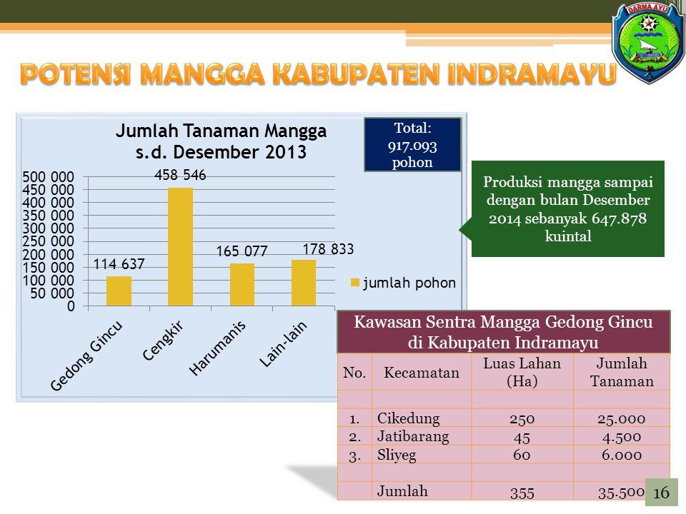 Produksi mangga sampai dengan bulan Desember 2014 sebanyak 647.878 kuintal Total: 917.093 pohon Kawasan Sentra Mangga Gedong Gincu di Kabupaten Indramayu 16