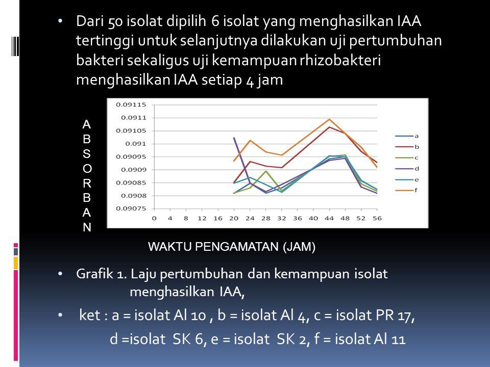 Dari 50 isolat dipilih 6 isolat yang menghasilkan IAA tertinggi untuk selanjutnya dilakukan uji pertumbuhan bakteri sekaligus uji kemampuan rhizobakte