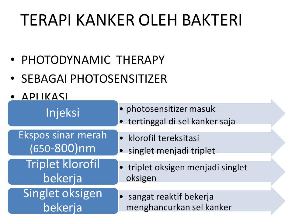 TERAPI KANKER OLEH BAKTERI PHOTODYNAMIC THERAPY SEBAGAI PHOTOSENSITIZER APLIKASI photosensitizer masuk tertinggal di sel kanker saja Injeksi klorofil tereksitasi singlet menjadi triplet Ekspos sinar merah (650 -800)nm triplet oksigen menjadi singlet oksigen Triplet klorofil bekerja sangat reaktif bekerja menghancurkan sel kanker Singlet oksigen bekerja