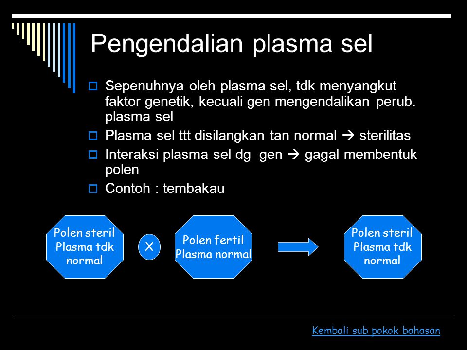 Pengendalian plasma sel  Sepenuhnya oleh plasma sel, tdk menyangkut faktor genetik, kecuali gen mengendalikan perub. plasma sel  Plasma sel ttt disi