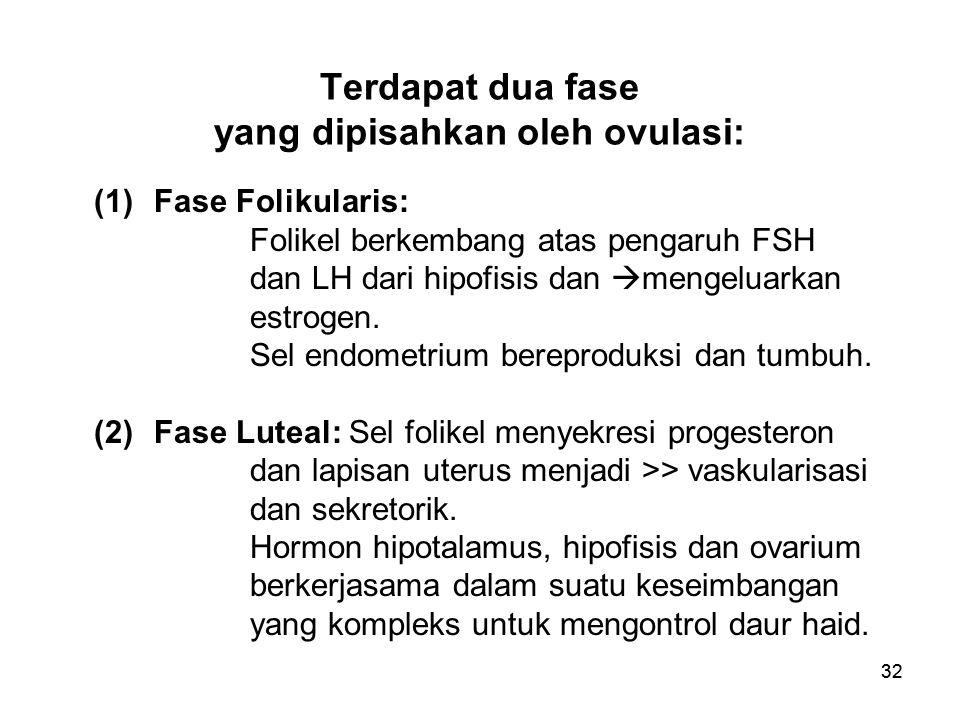 32 Terdapat dua fase yang dipisahkan oleh ovulasi: (1)Fase Folikularis: Folikel berkembang atas pengaruh FSH dan LH dari hipofisis dan  mengeluarkan