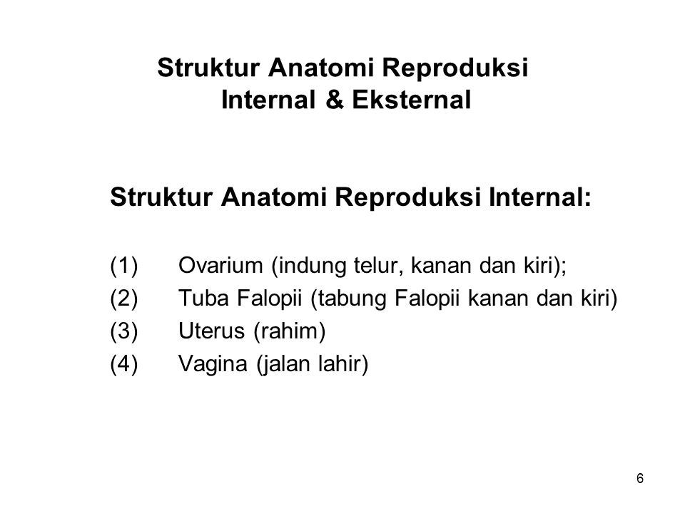 6 Struktur Anatomi Reproduksi Internal & Eksternal Struktur Anatomi Reproduksi Internal: (1)Ovarium (indung telur, kanan dan kiri); (2) Tuba Falopii (