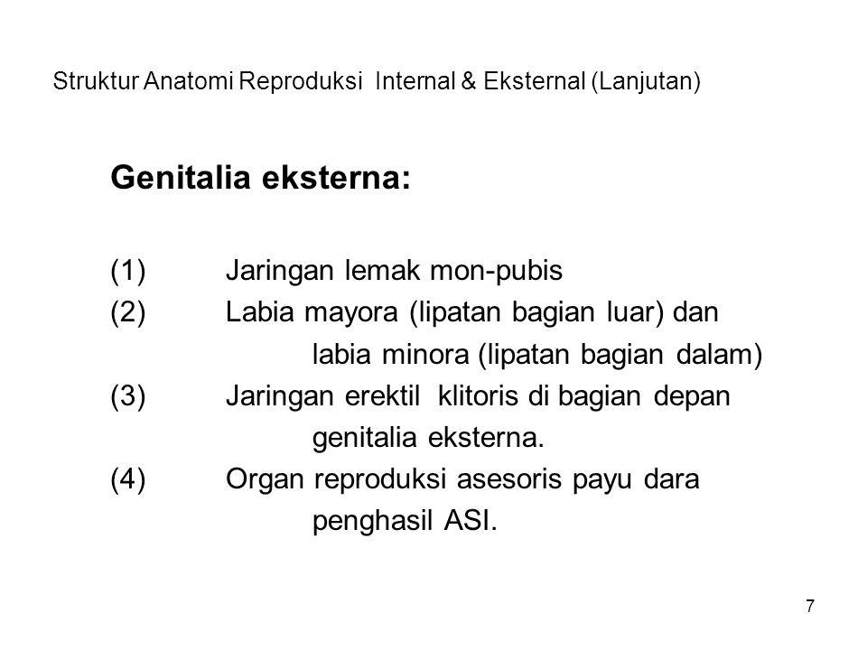7 Struktur Anatomi Reproduksi Internal & Eksternal (Lanjutan) Genitalia eksterna: (1)Jaringan lemak mon-pubis (2)Labia mayora (lipatan bagian luar) da