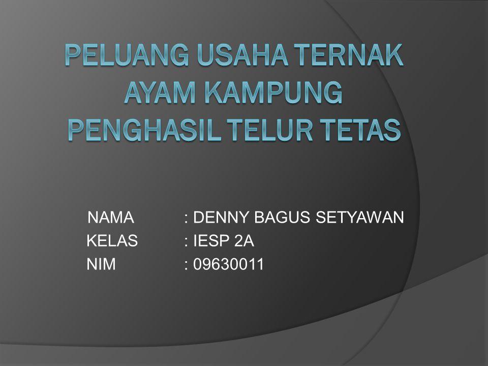 NAMA: DENNY BAGUS SETYAWAN KELAS: IESP 2A NIM: 09630011