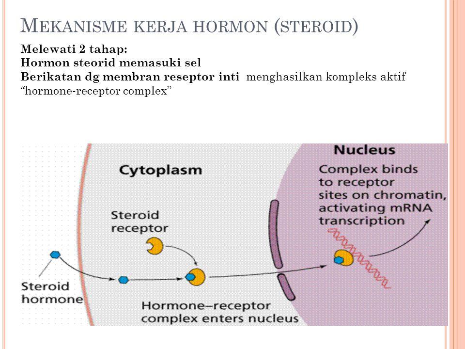 """M EKANISME KERJA HORMON ( STEROID ) Melewati 2 tahap: Hormon steorid memasuki sel Berikatan dg membran reseptor inti menghasilkan kompleks aktif """"horm"""