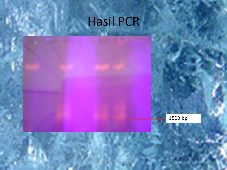 Hasil PCR 9/2/201012SEMINAR TUGAS AKHIR 1500 bp