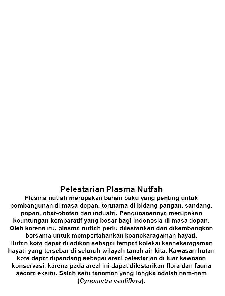 Pelestarian Plasma Nutfah Plasma nutfah merupakan bahan baku yang penting untuk pembangunan di masa depan, terutama di bidang pangan, sandang, papan, obat-obatan dan industri.