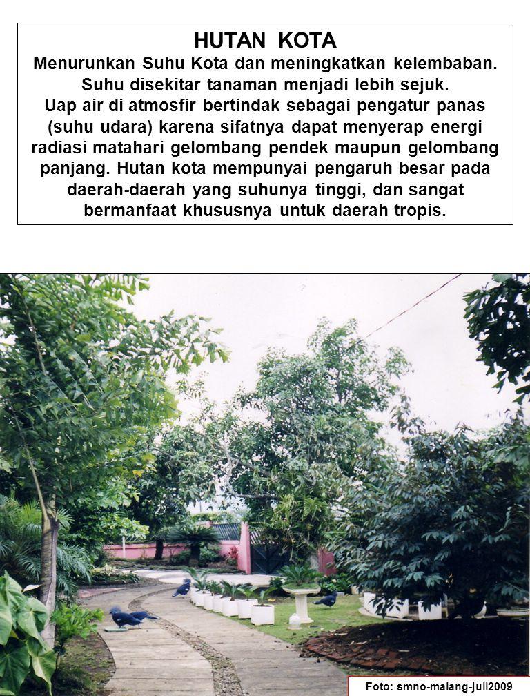 HUTAN KOTA Menurunkan Suhu Kota dan meningkatkan kelembaban.