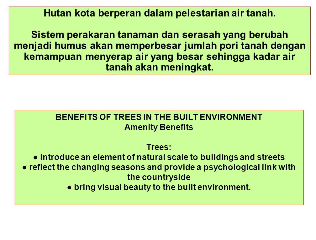 Hutan kota berperan dalam pelestarian air tanah. Sistem perakaran tanaman dan serasah yang berubah menjadi humus akan memperbesar jumlah pori tanah de
