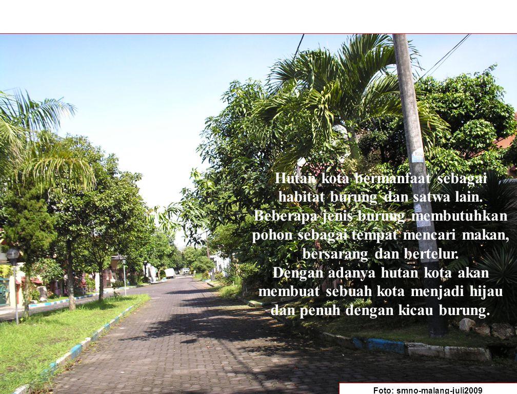 Hutan kota bermanfaat sebagai habitat burung dan satwa lain. Beberapa jenis burung membutuhkan pohon sebagai tempat mencari makan, bersarang dan berte