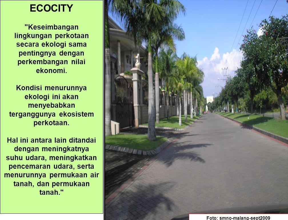 HUTAN KOTA Hutan kota berperan sebagai penyerap karbon monoksida.