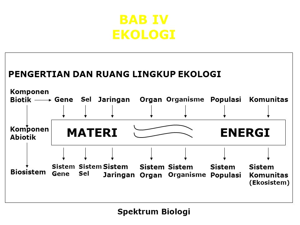 gene sel jaringan organ isme populasi komunitas ENERGI MATERI gene sel jaringan organ organisme populasi komunitas Sistem organisme Sistem gene Sistem jaringan Sistem organ Sistem populasi Sistem komunitas + Komponen biotik EKOLOGI SPEKTRUM BIOLOGI Komponen abiotik Biosistem Sistem sel