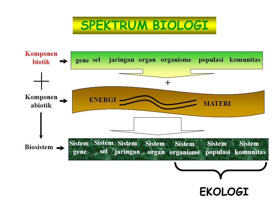 gene sel jaringan organ isme populasi komunitas ENERGI MATERI gene sel jaringan organ organisme populasi komunitas Sistem organisme Sistem gene Sistem