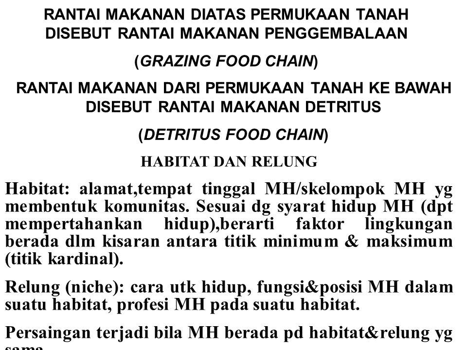 RANTAI MAKANAN DIATAS PERMUKAAN TANAH DISEBUT RANTAI MAKANAN PENGGEMBALAAN (GRAZING FOOD CHAIN) RANTAI MAKANAN DARI PERMUKAAN TANAH KE BAWAH DISEBUT R