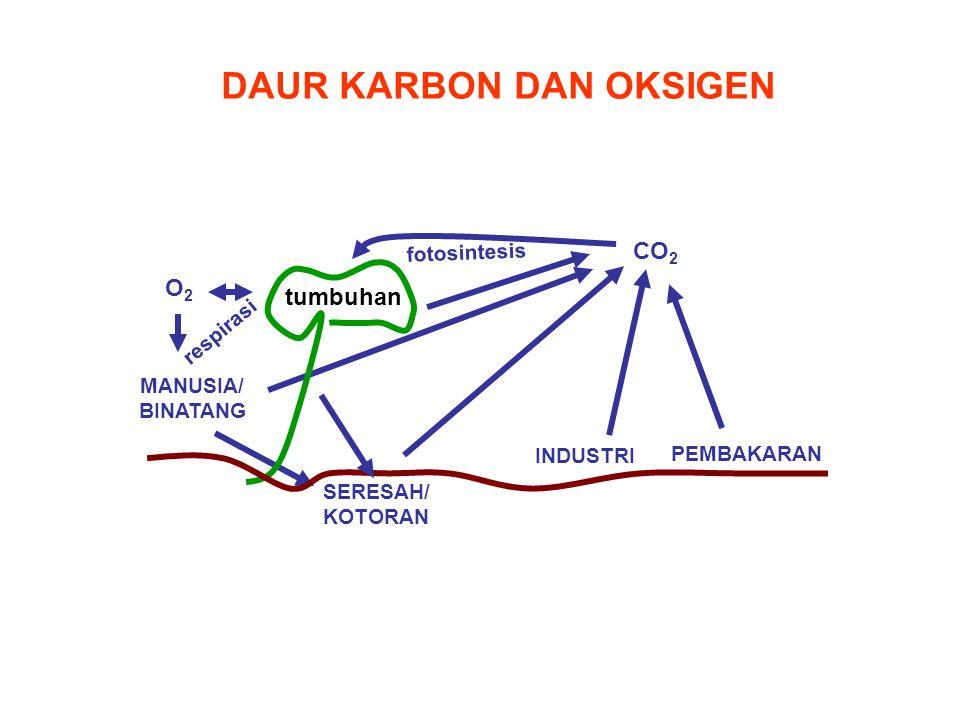 DAUR KARBON DAN OKSIGEN INDUSTRI PEMBAKARAN CO 2 SERESAH/ KOTORAN O2O2 MANUSIA/ BINATANG respirasi fotosintesis tumbuhan