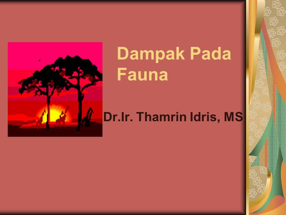 Pengertian Fauna Semua Jenis satwa atau binatang yang hidup pada suatu tempat, kawasan atau habitat - Fauna Sulawesi - Fauna Karaenta Kelompok jenis satwa atau binatang pada suatu wilayah - Fauna burung-burung Sulawesi - Fauna Kupu-kupu di Bantimurung