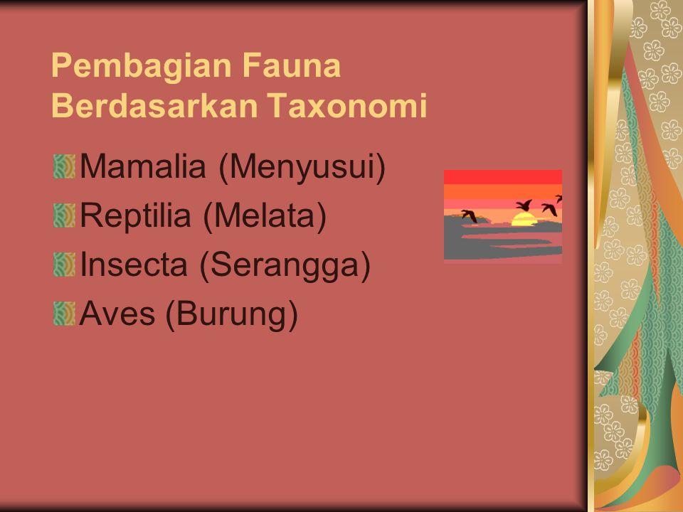 Pembagian Fauna Berdasarkan Taxonomi Mamalia (Menyusui) Reptilia (Melata) Insecta (Serangga) Aves (Burung)