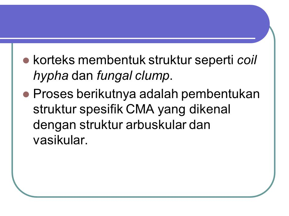 korteks membentuk struktur seperti coil hypha dan fungal clump. Proses berikutnya adalah pembentukan struktur spesifik CMA yang dikenal dengan struktu