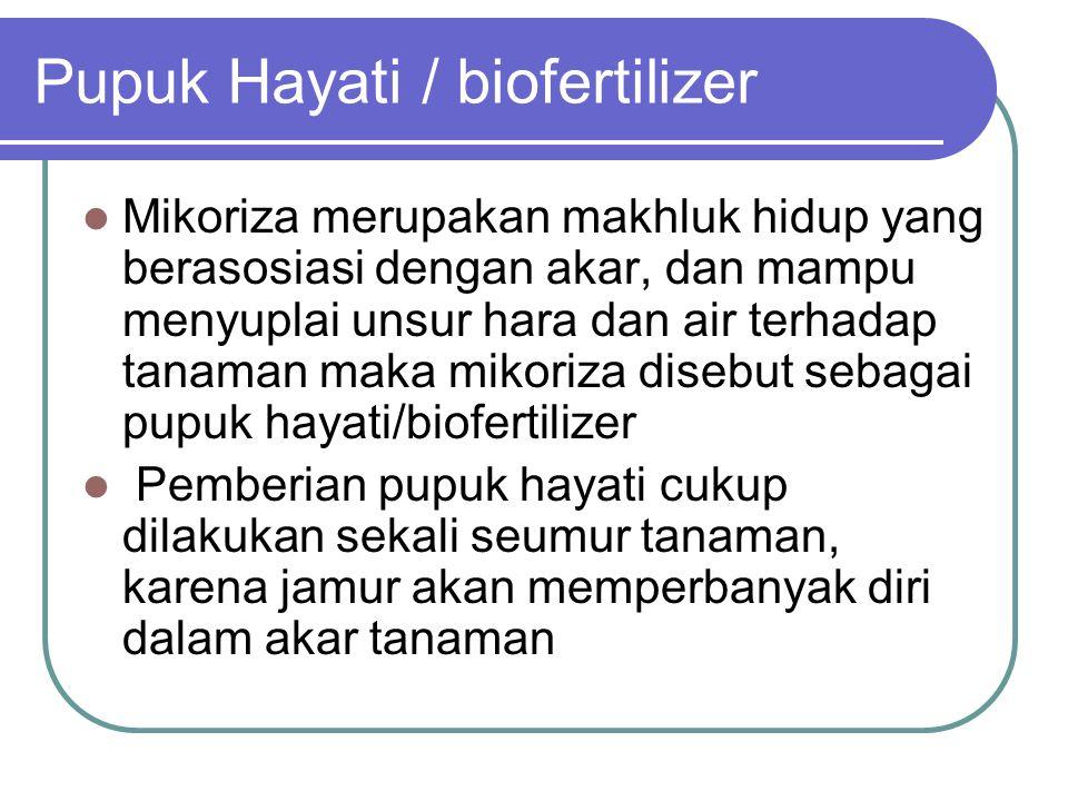 Pupuk Hayati / biofertilizer Mikoriza merupakan makhluk hidup yang berasosiasi dengan akar, dan mampu menyuplai unsur hara dan air terhadap tanaman ma