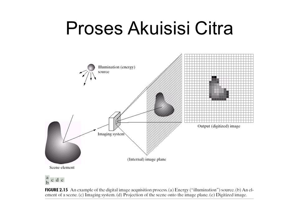 Proses Akuisisi Citra