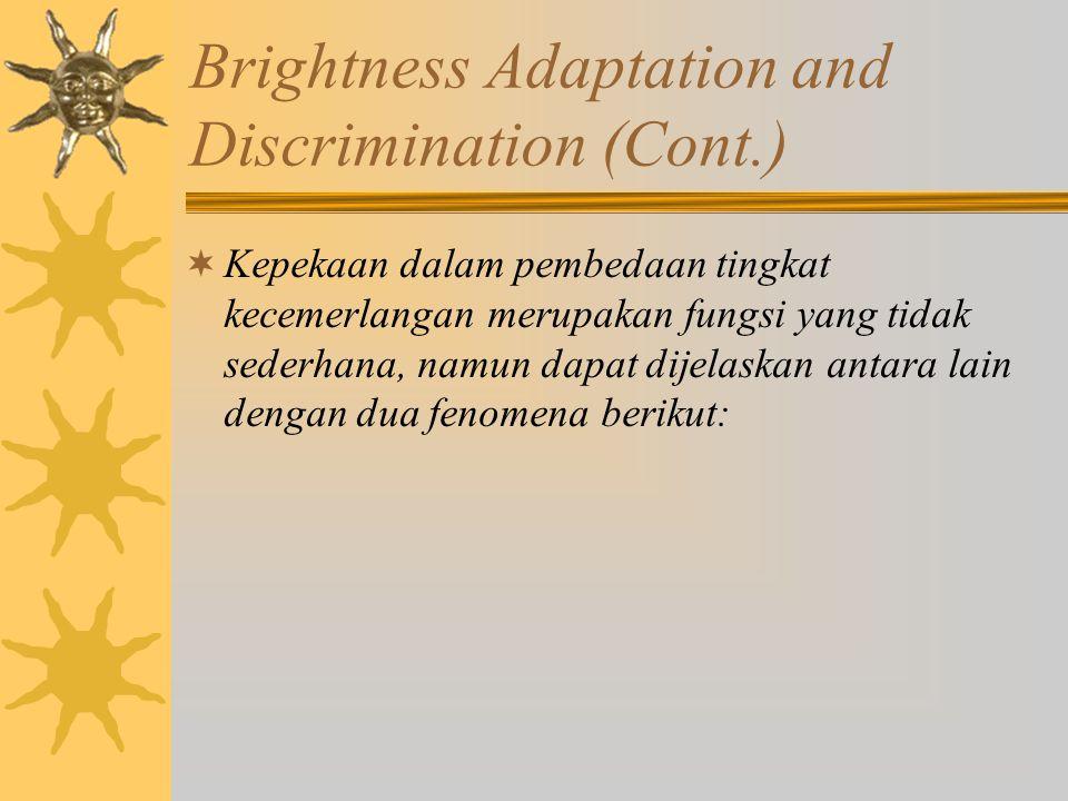 Brightness Adaptation and Discrimination (Cont.)  Kepekaan dalam pembedaan tingkat kecemerlangan merupakan fungsi yang tidak sederhana, namun dapat d