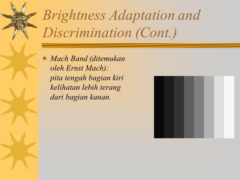 Brightness Adaptation and Discrimination (Cont.)  Mach Band (ditemukan oleh Ernst Mach): pita tengah bagian kiri kelihatan lebih terang dari bagian kanan.